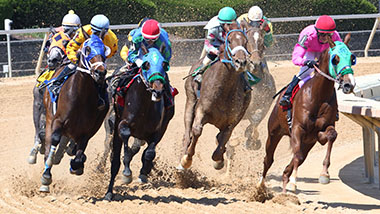 Four main horses on a turn in the race track