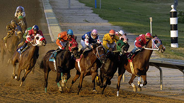 Horses racing on the track at dusk
