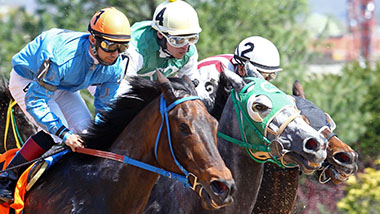 Three horses and jockeys up close racetrack