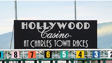 Horse Racing Starting Gate