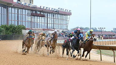 Horse Racing | Hollywood Casino at Charles Town Races